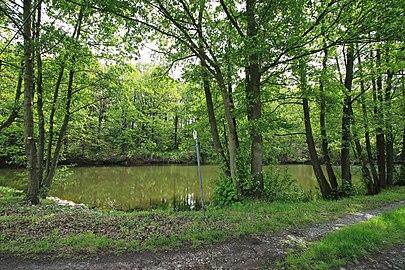 Geschützter Landschaftsbestandteil Schubertgrund in Sachsen.2H1A1379WI.jpg