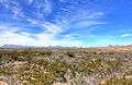 Gfp-texas-big-bend-national-park-desert-and-skies.jpg