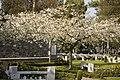 Glasnevin Cemetery - (442802728).jpg