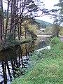 Glendasan River - geograph.org.uk - 1551376.jpg