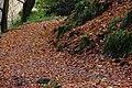 Glenoe Glen (5) - geograph.org.uk - 282480.jpg