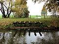 Goldenstädt Lewitz Neuer Kanal 2012-10-24 0107.JPG