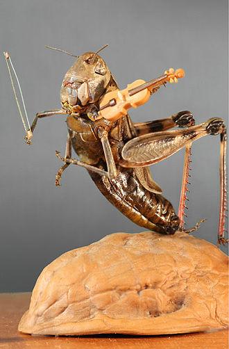 Micro miniature - Micro miniature: grasshopper playing on the violin