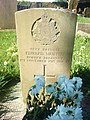 Grave of Private Edward Murphy - geograph.org.uk - 1275757.jpg