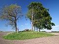 Grobowiec z epoki żelaza - panoramio.jpg