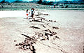 Guatemala1976Earthquake14ct.jpg