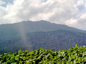 Gunung Ledang from the road.jpg
