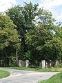 Hýsly - památný strom v panské zahradě.JPG