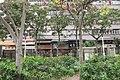 HK YL 元朗 Yuen Long 大陂頭休憩花園 Tai Pei Tau Rest Garden trees n Wah Shing Mansion Feb 2017.jpg