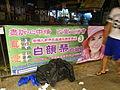 HK night banner Aug-2012 Hong Kong legislative election PECK Wan-kam Pamela.JPG