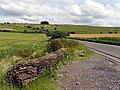Hackpen Whitehorse - geograph.org.uk - 504990.jpg