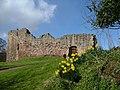 Hailes Castle - panoramio.jpg