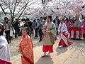Hana shizume no matsuri in the row of cherry blossom trees (2012-Sakura girls).jpg