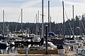 Harbour Marina Bainbridge Island Washington 2019-1222.jpg