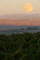 Harvest Moon over looking vineyards.jpg