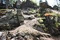Harzwanderung Oberharz um Braunlage - Wurmberg - An und um die Scherstorklippe - panoramio (5).jpg