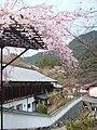 Hasedera Temple 長谷寺 - panoramio (18).jpg