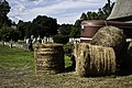 Hay at Old Farm, Greenfield, MA - panoramio.jpg