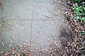 Head Sidewalk Signature-2.jpg