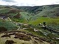 Heatherhope from the ridge south of Blackbrough Hill - geograph.org.uk - 1424326.jpg
