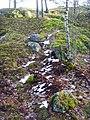 Henriksborgs ruin, den 18 december 2008, bild 26.JPG