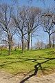High Park, Toronto DSC 0231 (17206035130).jpg