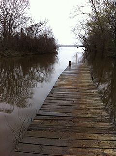 High water level Lake Palestine March 2015.JPG