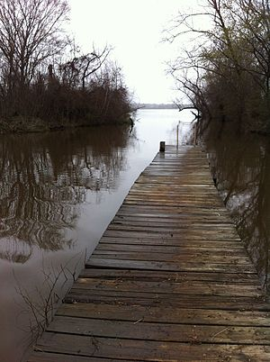 Lake Palestine - A public boat launch located near the city of Chandler. High water levels are seen here (March 2015).