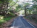 Highway 199 2.jpg