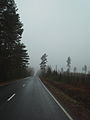 Highway 459 near Juva in the autumn.JPG