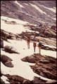 Hikers Of Explorer Post 397 Of Los Angeles Area Climb From 7500 Ft. To Monarch Lake. (11,200 Feet) - NARA - 543385.tif