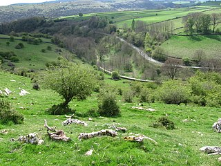 Tideswell Dale Valley in the Derbyshire Peak District
