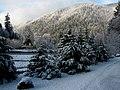 Hoh in winter 12 (22655615938).jpg