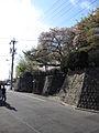 Hoshizaki Castle 014.JPG