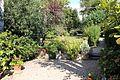 Il palmerino, giardino 01.jpg
