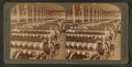 In the great spinning-room - 104,000 spindles - Olympian Cotton Mills, Columbia, S.C, from Robert N. Dennis collection of stereoscopic views 2.png