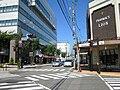 Inashi Ekimae Kosaten 2009-08a.JPG