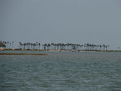 Barrier Islands separating Pulicat lake from خلیج بنگال