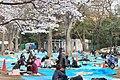 Inokashira Park 2009-04-05 (3446855118).jpg