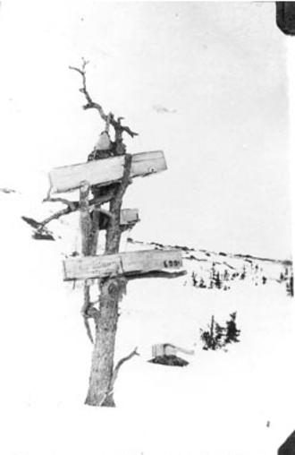 Burial tree - Inuit tree burial, Leaf River, Quebec, c. 1924-1936
