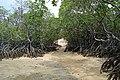 Island romance - panoramio.jpg