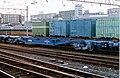 JRF koki104-233.jpg