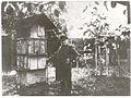 Jan Dzierżon w pasiecie w Łowkowicach.jpg