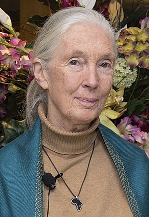 Jane Goodall - Goodall in 2015