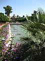 Jardins de l'Alcazar de Cordoue.jpg