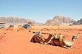 Jordanian desert landscape (12464866503).jpg