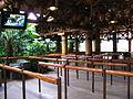 Jurassic Park The Ride at Universal Studios Japan 3.jpg
