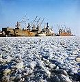 """Külmutuslaev """"Нарвский залив"""". Paljassaare sadamas 81.jpg"""