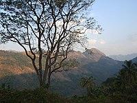 Kaippally Poonjar.jpg