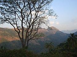 Vido de Kaippally, la monteta regiono de Poonjar